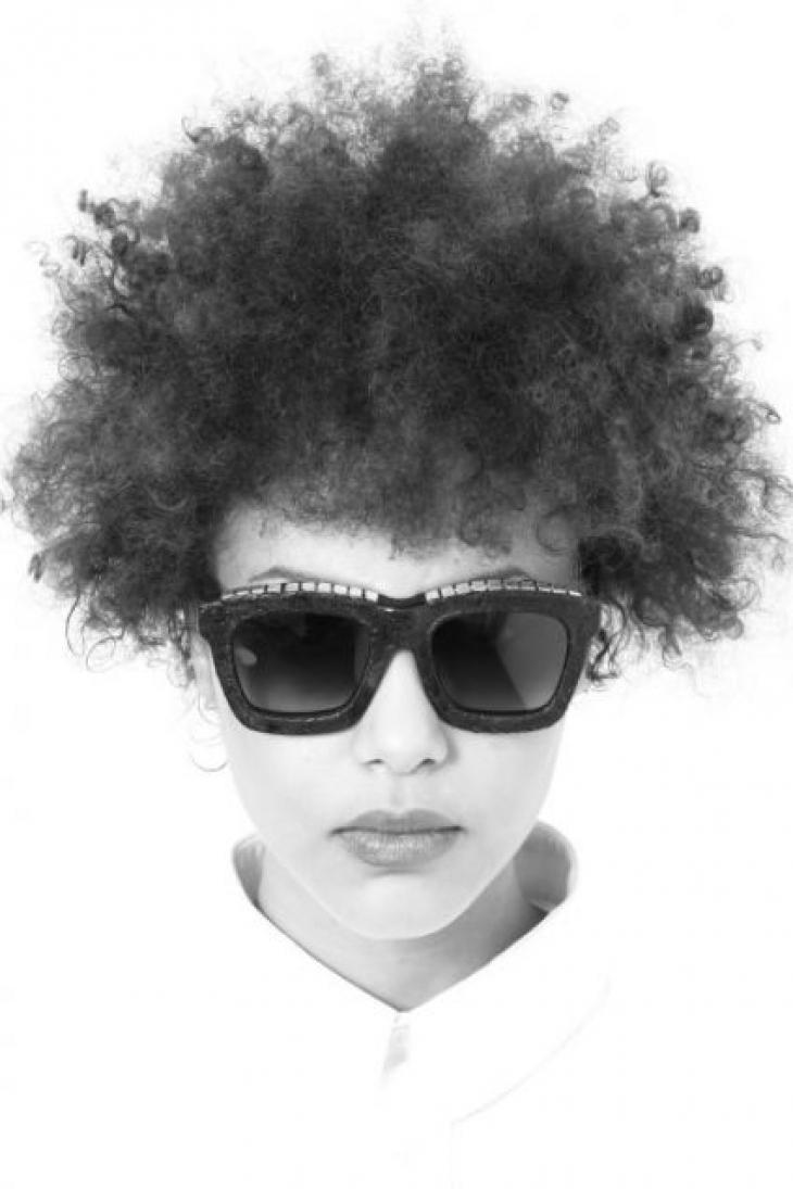 Dita Brillen